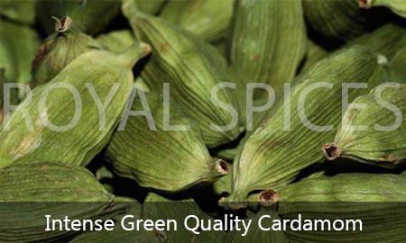 intense green grade cardamom