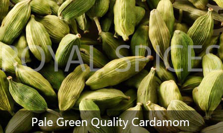 pale green grade cardamom